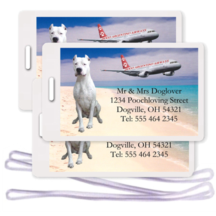 Dogo Argentino Set of 3 Personalized Airplane Design Luggage Tags