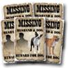Husband Missing