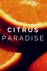 Citrus Paradise Package (Spring Special)