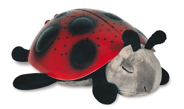 cloudb-ladybug.jpg