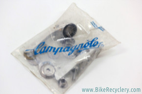NIB/NOS Campagnolo C-Record Downtube Shifters: Retro Friction