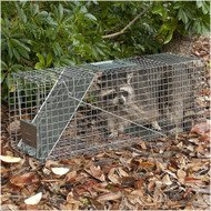 Live Animal Trap Rental