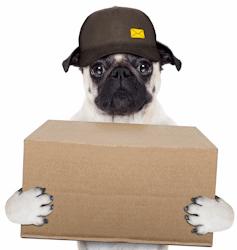 delivery-dog-4a Lectura Obligatoria Delivery