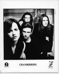 Cranberries Original Vintage Island Records 8x10 Press Photo