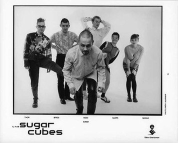 Sugar Cubes Original Mint Elektra Records Vintage 8x10 b&w Press Photo