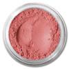 Beauty | Blushed Pink