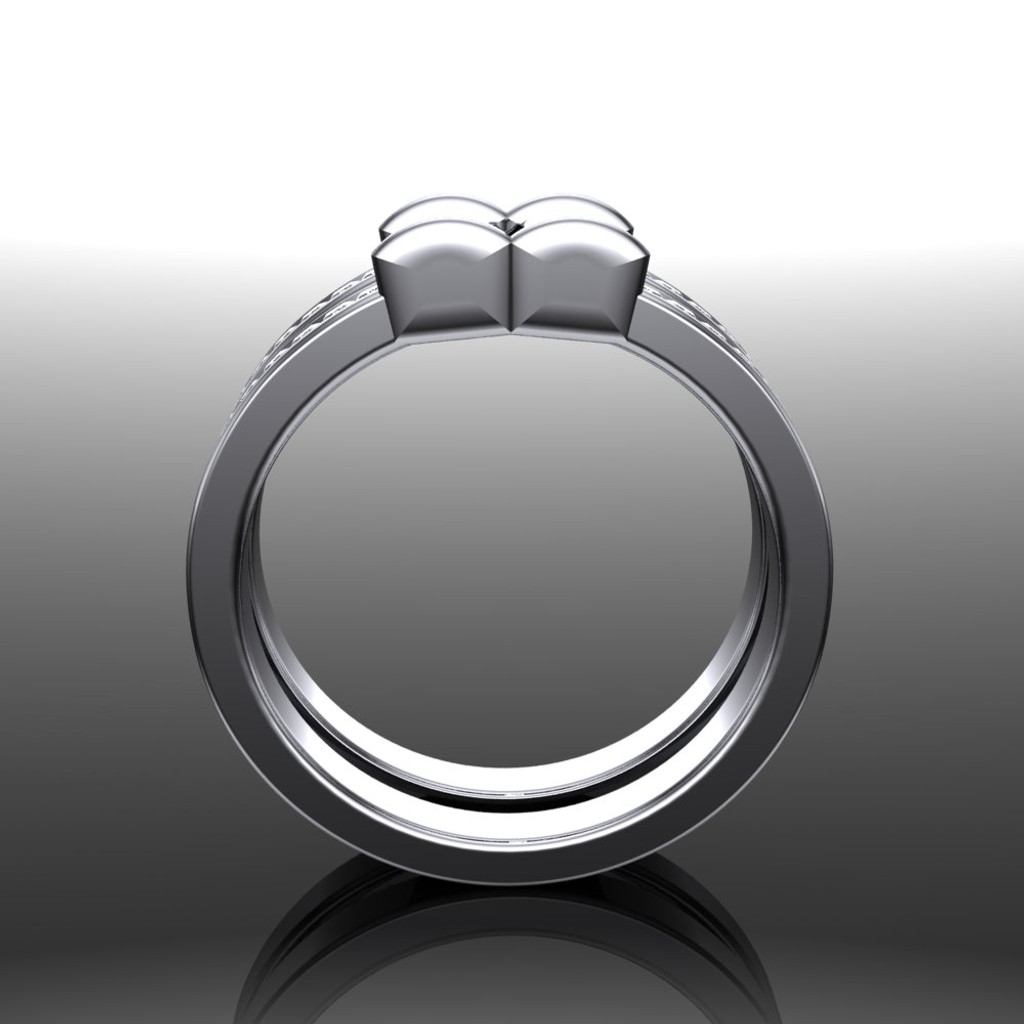 Men's Gay Engagement Ring, Two Stone Diamond Ring Double Band front view