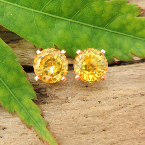 Yellow Montana Sapphire Stud Earrings, Limited Edition