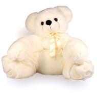 Teddy the Bear -  Large Stuffed Teddy Bear