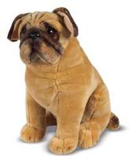 Baxter the Pug