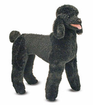 Penelope the Poodle