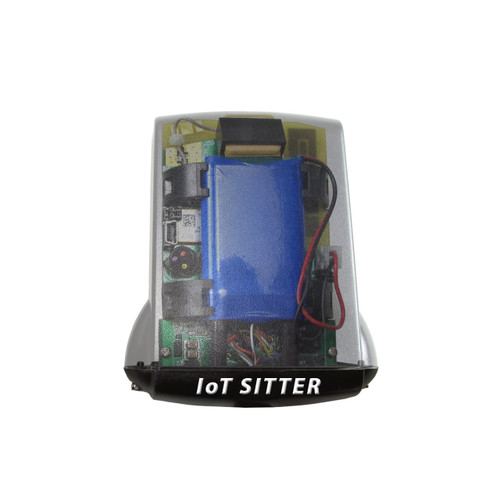 Flower Sitter Teen - Internet of Things (IoT) unique identifier and transfer for human-to-human or human-to-computer interaction Sensors for Your Flower