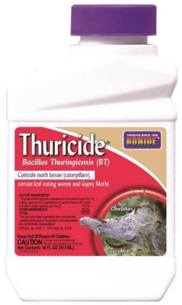 Thuricide Concentrate 16 Oz