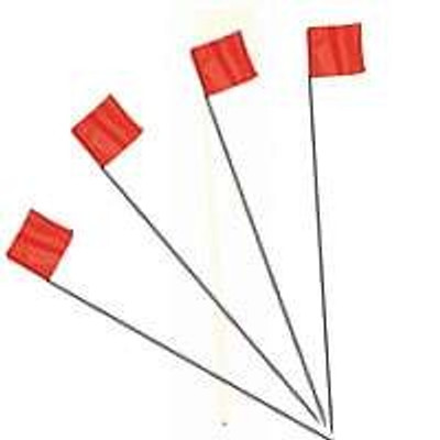 "Stake Flag, Orange, 2.5"" x 3.5"", With 21"" Stake"