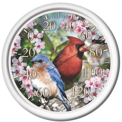 """Thermometer, Outdoor, """"Cardinal"""", 12"""""""