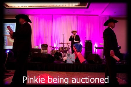 pinkiebeingauctioned1.jpg