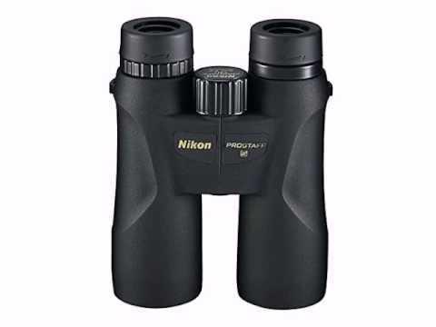 Nikon ProStaff 5 10x42 Black - 018208075713