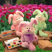 Little Bunny Foo Foo Gift  Set