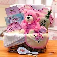 Organic New Baby Basics Gift Baskets - Pink