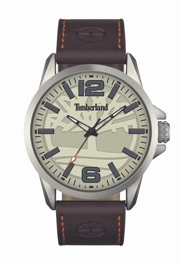 Bridgton Gent's Watch by Timberland