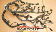 Engine wire harness Magnum