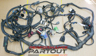 Front end chassis wiring harness Magnum 300 2005