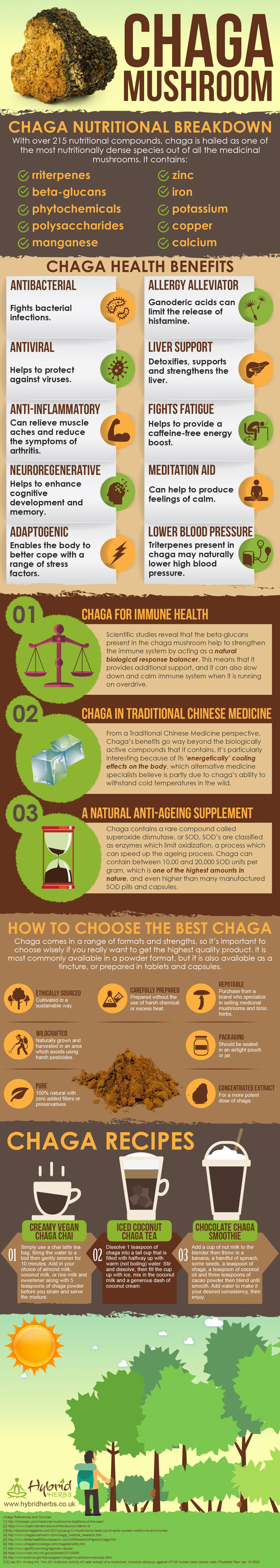 chaga-mushroom-health-benefits.jpg