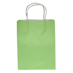Party Bag, Touch of Lime Green, Large