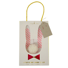 Bunny Dress Up Kit