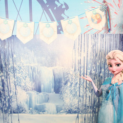 Frozen photo backdrop