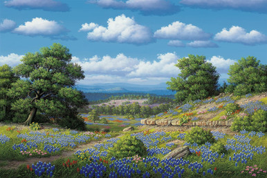 Hill Country Blues by R. W. Hedge