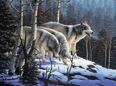 Wolf Wildlife Canvas Art Prints | First Hunt by RW Hedge