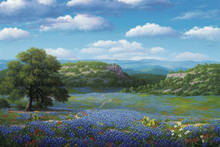Bluebonnet Giclee Art Prints | RW Hedge Bluebonnet Valley
