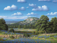 Bluebonnet Art Prints | Bluebonnet Hill by R W Hedge