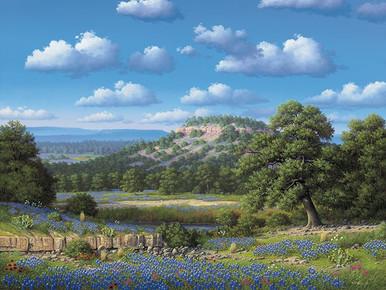 Bluebonnet Art Prints | Bluebonnet Hill by R W Hedge