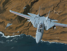 Top Gun Tomcats by K. Price Randel