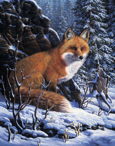 Red Fox Canvas Giclee Art Prints | RW Hedge Audible Hush