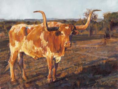 Morning Shadow by Ragan Gennusa Fine Art Giclee Print