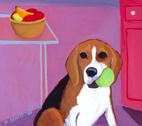 William Beagle with kong