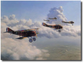 13th Aero Squadron by Jim Laurier
