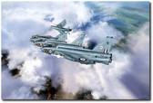 Tiger Squadron Peel Off Aviation Art
