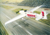 Chasing the Dream by Don Feight - Sharp's Formula One Racer, Nemesis  Aviation Art