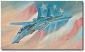 Last Time Baby! by Bryan David Snuffer - Grumman F-14 Tomcat