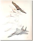 Metamorphosis III: Eagle's Eye by Jody Sjogren Aviation Art