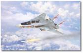 Prowling Wolf by Mark Karvon - Grumman F-14 Tomcat
