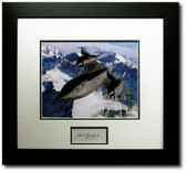 Blackbird over the Rockies - Bob Gilliland