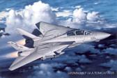 F-14A Tomcat Plus