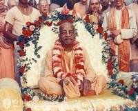 "Srila Prabhupada Photo, Surrounded by Love, 11""x14"""