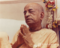 "Srila Prabhupada Photo, Prayerful Mood, 8""x10"""