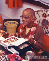 "Srila Prabhupada Photo, New Fifth Canto, 8""x10"""